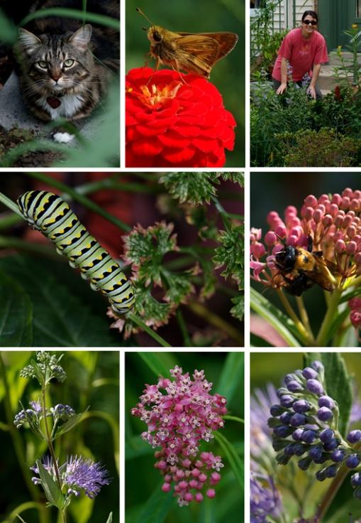 1-regina-garden.jpg