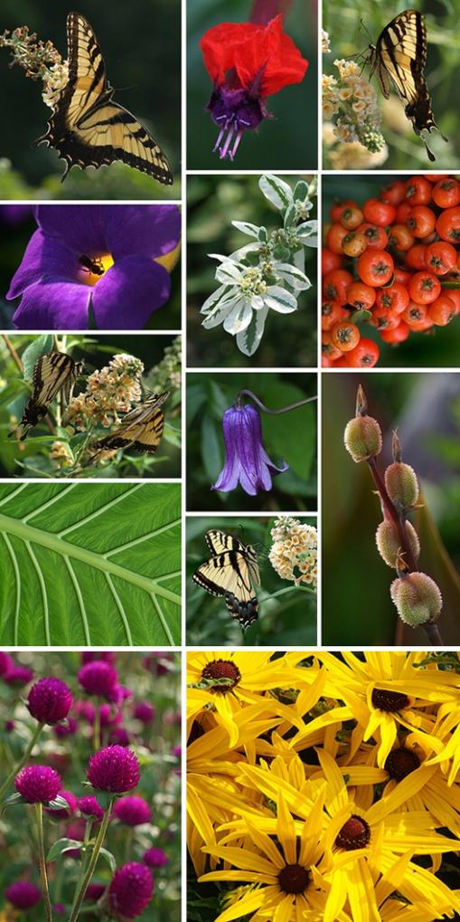 greensprings-3.jpg