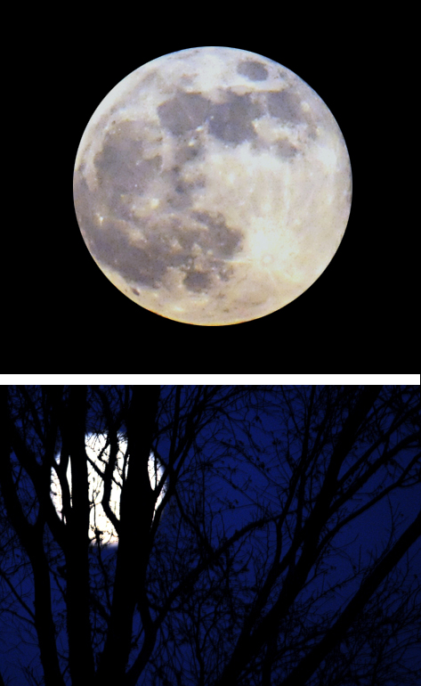 december-12-moon1