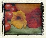 redtomatoyellowflower