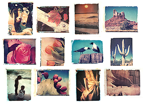 Polaroid Cards Collage
