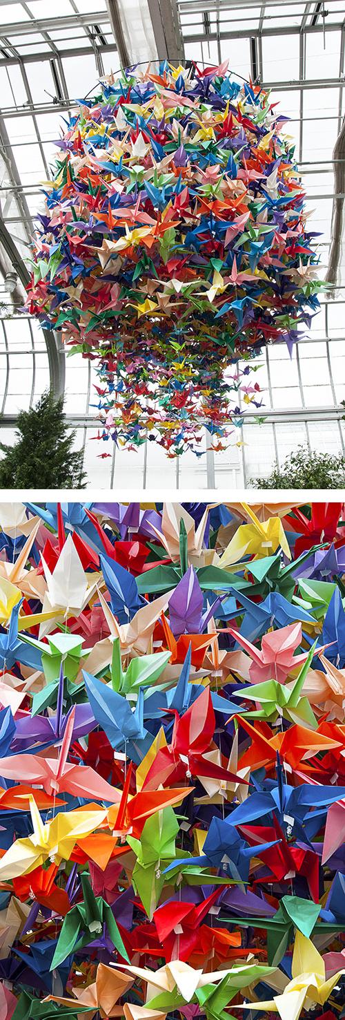 ColorfulCranes