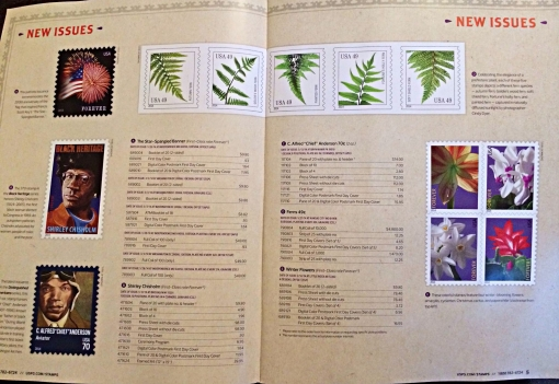 Fern in catalog