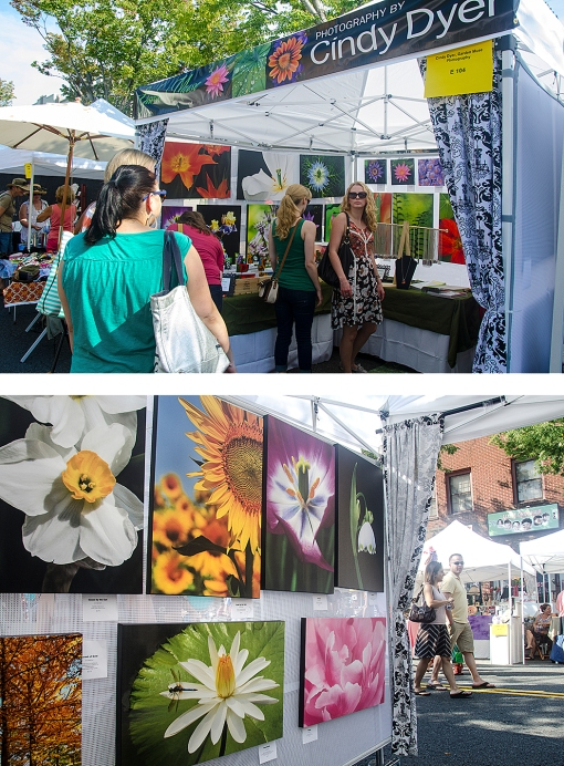 Art Fair Booth