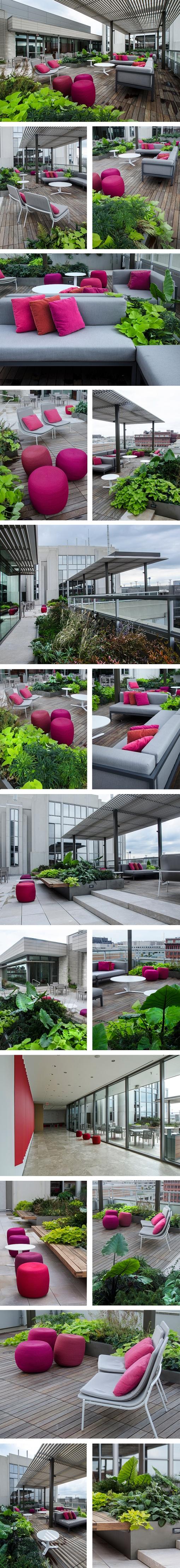 APA Terrace 2