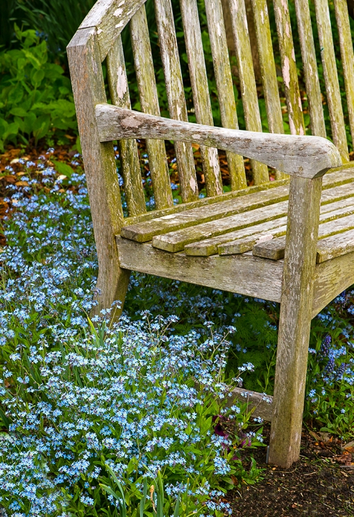 Forgetmenotsbench