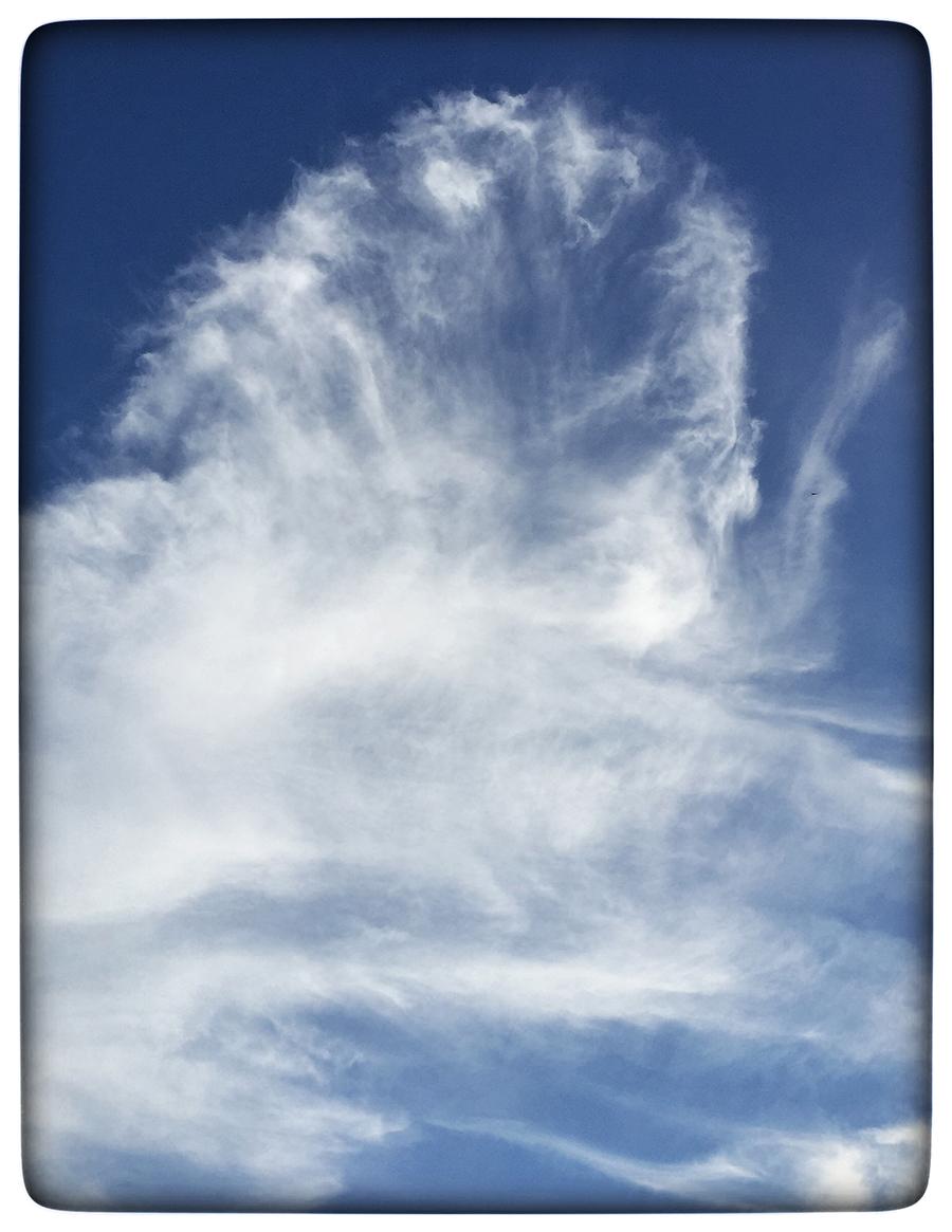 Einstein Cloud web