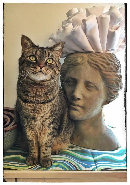 Pixel & Lady