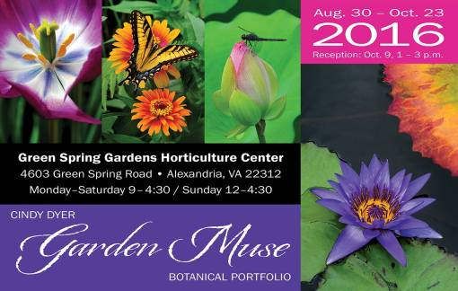 Garden Muse Exhibit Postcard